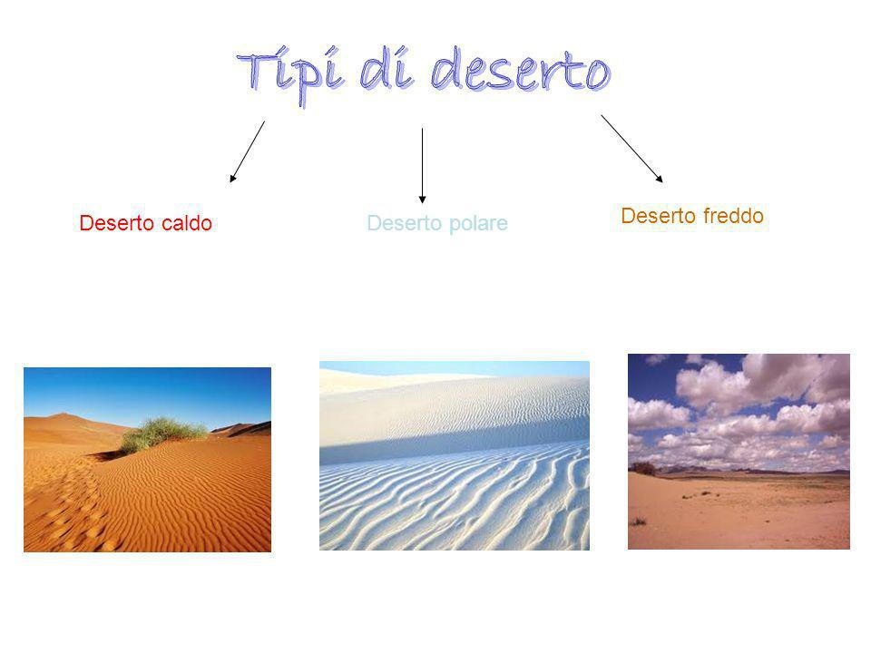 Deserto caldoDeserto polare Deserto freddo