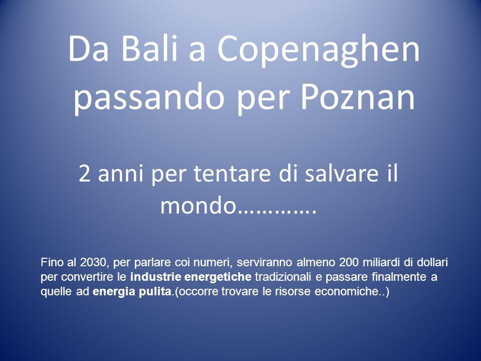 Da Bali a Copenaghen passando per Poznan 2 anni per tentare di salvare il mondo…………. Fino al 2030, per parlare coi numeri, serviranno almeno 200 milia