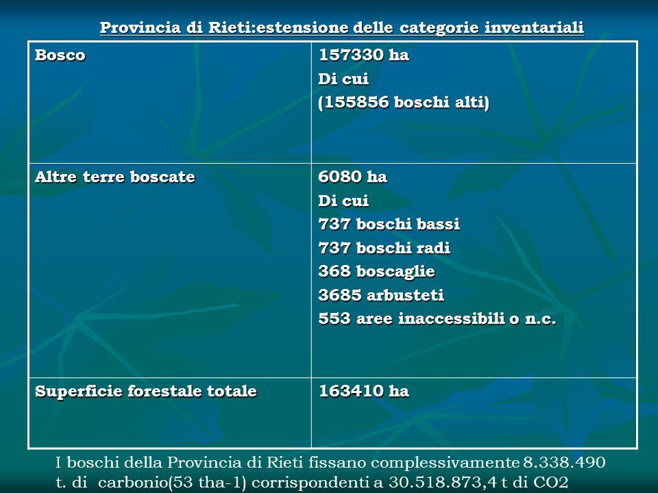 Bosco 157330 ha Di cui (155856 boschi alti) Altre terre boscate 6080 ha Di cui 737 boschi bassi 737 boschi radi 368 boscaglie 3685 arbusteti 553 aree