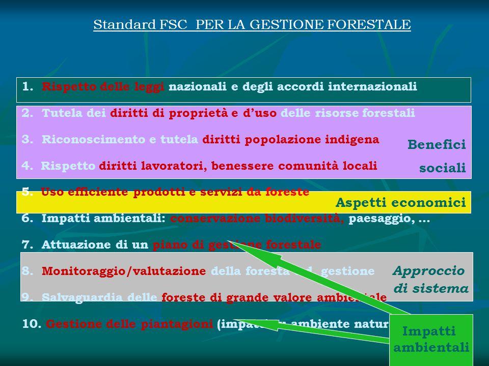 A Approccio di sistema Aspetti economici Benefici sociali 1. Rispetto delle leggi nazionali e degli accordi internazionali 2. Tutela dei diritti di pr