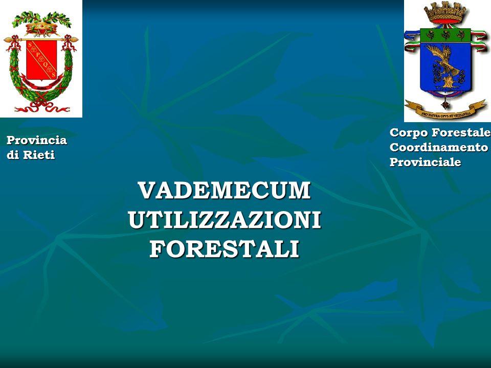 Provincia di Rieti Corpo Forestale Coordinamento Provinciale VADEMECUM UTILIZZAZIONI FORESTALI