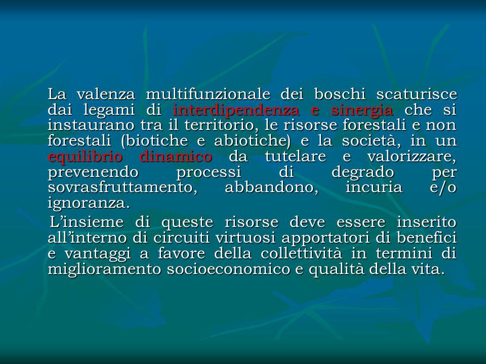 La valenza multifunzionale dei boschi scaturisce dai legami di interdipendenza e sinergia che si instaurano tra il territorio, le risorse forestali e