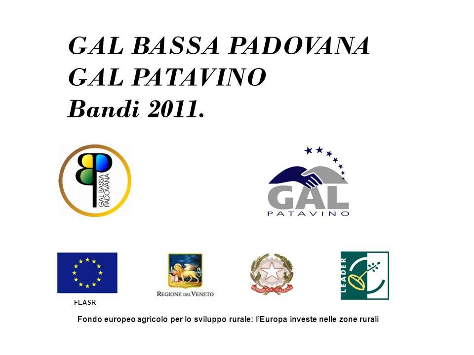 GAL BASSA PADOVANA GAL PATAVINO Bandi 2011. FEASR Fondo europeo agricolo per lo sviluppo rurale: lEuropa investe nelle zone rurali