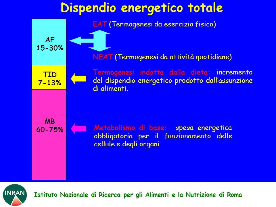 Istituto Nazionale di Ricerca per gli Alimenti e la Nutrizione di Roma TID 7-13% MB 60-75% AF 15-30% EAT (Termogenesi da esercizio fisico) NEAT (Termogenesi da attività quotidiane) Metabolismo di base: spesa energetica obbligatoria per il funzionamento delle cellule e degli organi Termogenesi indotta dalla dieta: incremento del dispendio energetico prodotto dallassunzione di alimenti.