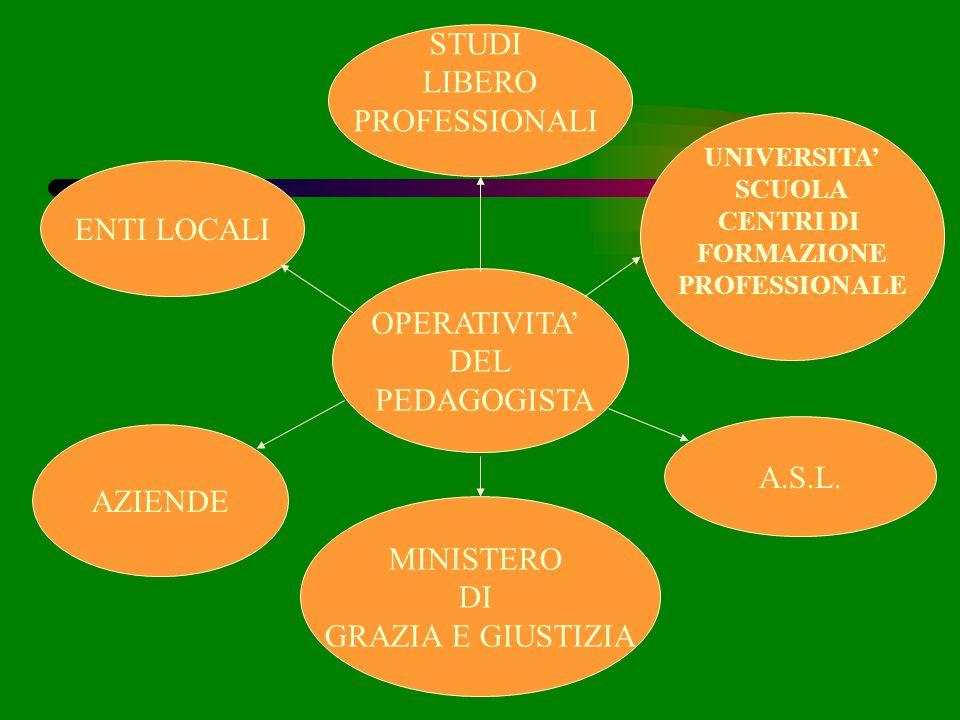 OPERATIVITA DEL PEDAGOGISTA STUDI LIBERO PROFESSIONALI ENTI LOCALI AZIENDE MINISTERO DI GRAZIA E GIUSTIZIA UNIVERSITA SCUOLA CENTRI DI FORMAZIONE PROF