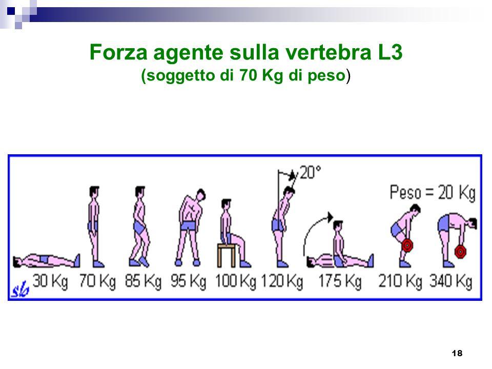 18 Forza agente sulla vertebra L3 (soggetto di 70 Kg di peso)