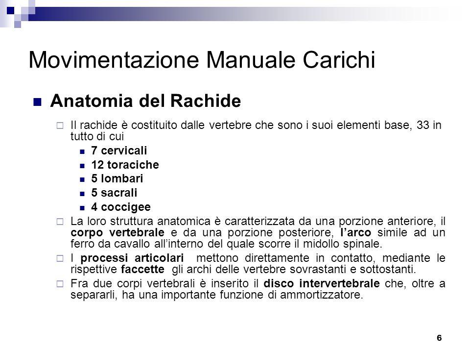 6 Movimentazione Manuale Carichi Anatomia del Rachide Il rachide è costituito dalle vertebre che sono i suoi elementi base, 33 in tutto di cui 7 cervi