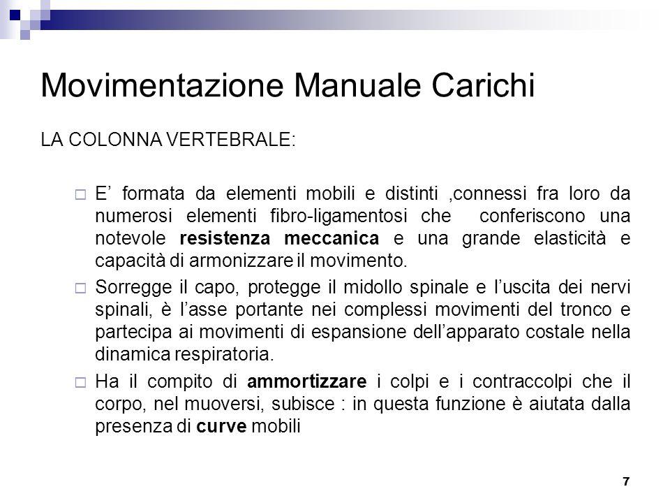 7 Movimentazione Manuale Carichi LA COLONNA VERTEBRALE: E formata da elementi mobili e distinti,connessi fra loro da numerosi elementi fibro-ligamento