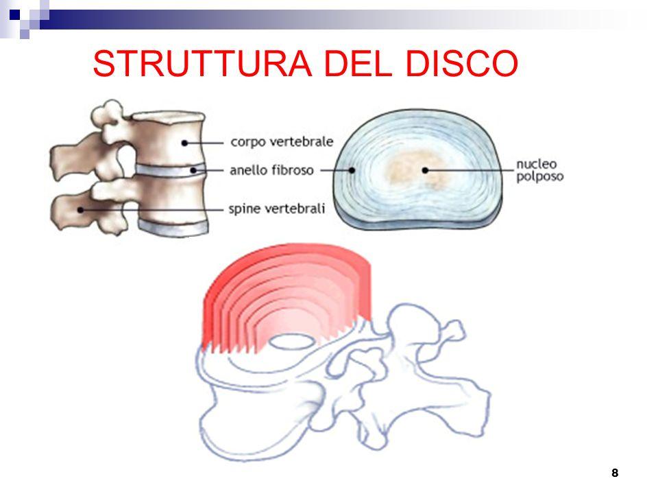 8 STRUTTURA DEL DISCO