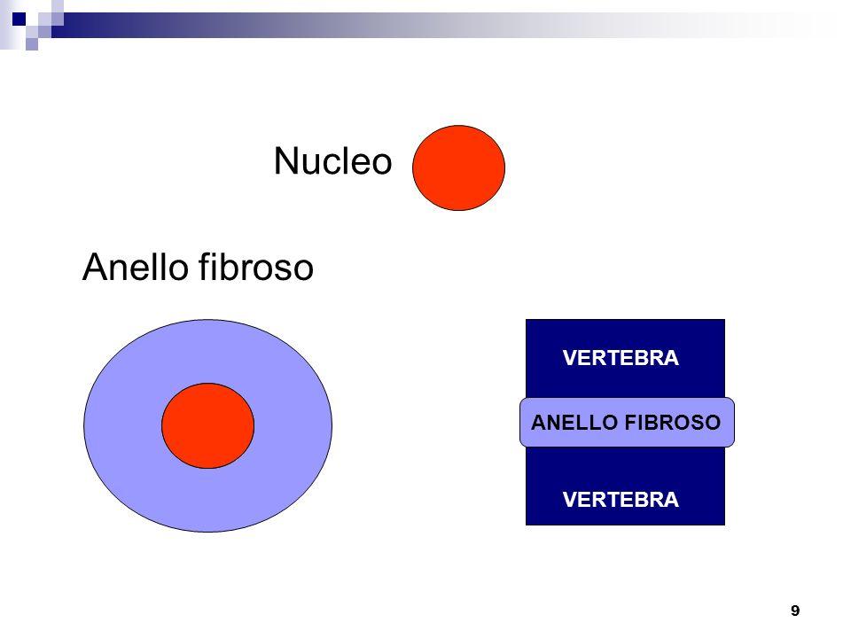 9 Anello fibroso Nucleo ANELLO FIBROSO VERTEBRA