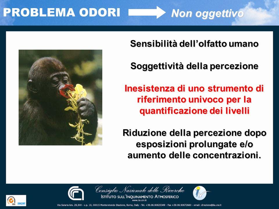 PROBLEMA ODORI Non oggettivo Sensibilità dellolfatto umano Soggettività della percezione Inesistenza di uno strumento di riferimento univoco per la qu