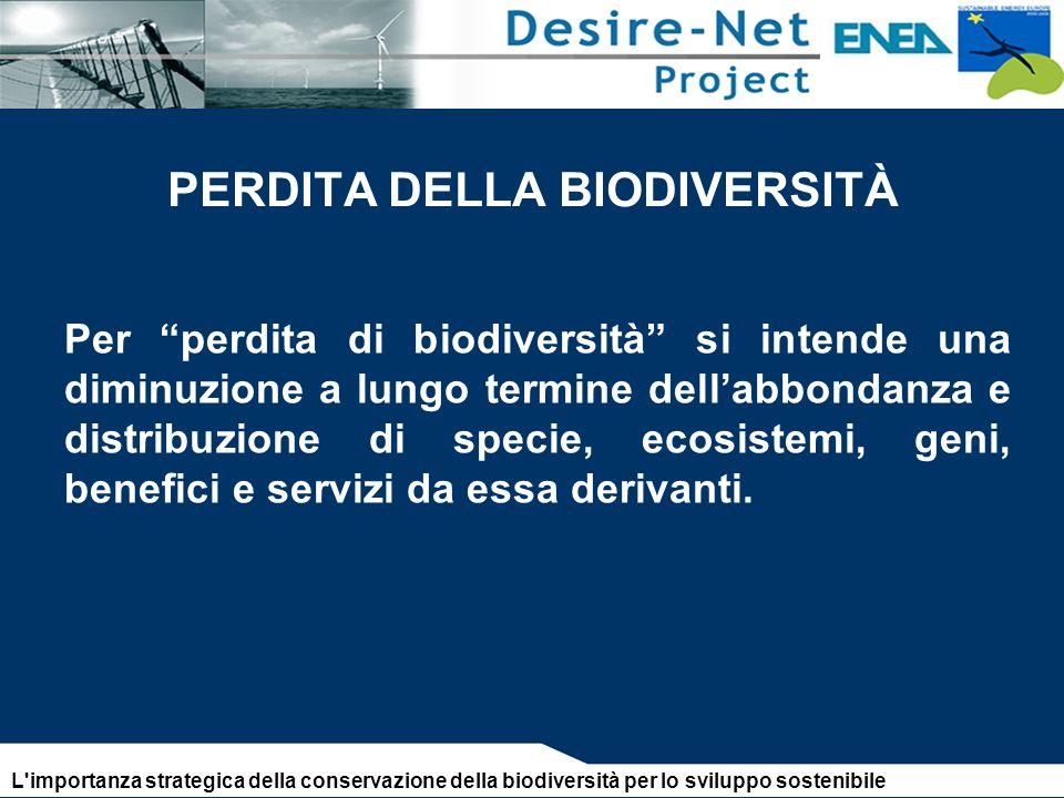 PERDITA DELLA BIODIVERSITÀ Per perdita di biodiversità si intende una diminuzione a lungo termine dellabbondanza e distribuzione di specie, ecosistemi, geni, benefici e servizi da essa derivanti.