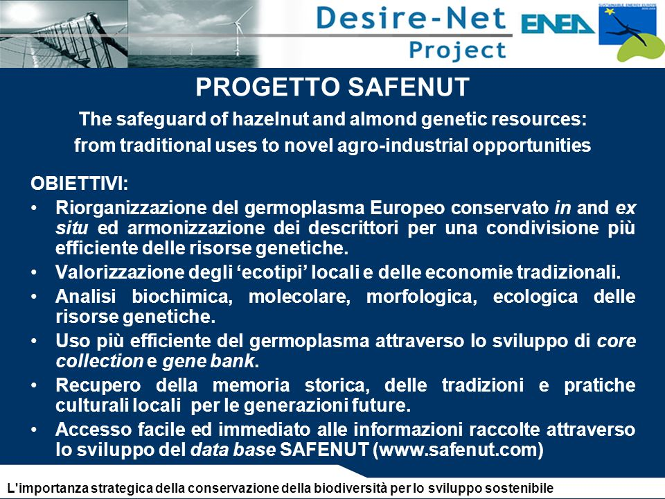 PROGETTO SAFENUT The safeguard of hazelnut and almond genetic resources: from traditional uses to novel agro-industrial opportunities OBIETTIVI: Riorg