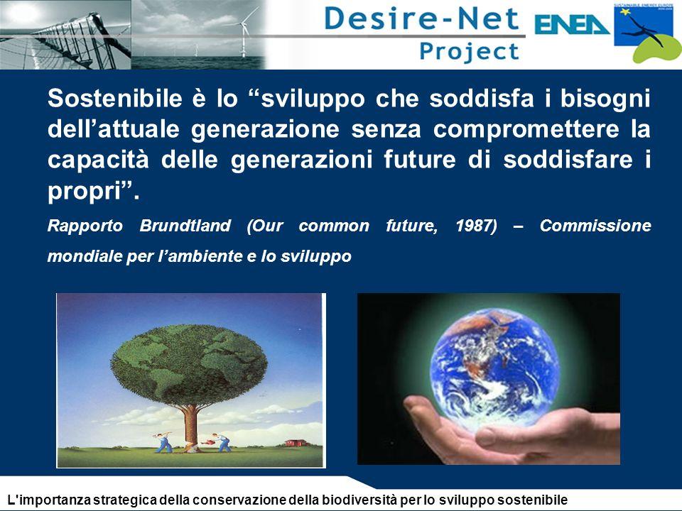Sostenibile è lo sviluppo che soddisfa i bisogni dellattuale generazione senza compromettere la capacità delle generazioni future di soddisfare i propri.