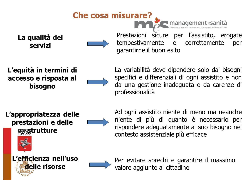 La qualità dei servizi Che cosa misurare? Lefficienza nelluso delle risorse Lequità in termini di accesso e risposta al bisogno Lappropriatezza delle