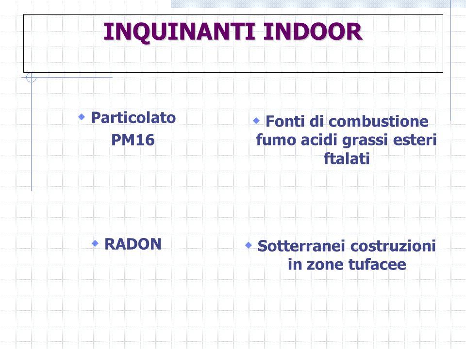 INQUINANTI INDOOR Particolato PM16 RADON Fonti di combustione fumo acidi grassi esteri ftalati Sotterranei costruzioni in zone tufacee