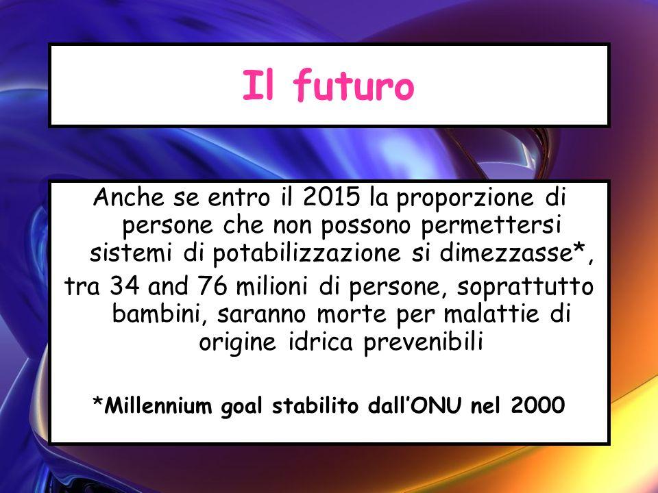 Il futuro Anche se entro il 2015 la proporzione di persone che non possono permettersi sistemi di potabilizzazione si dimezzasse*, tra 34 and 76 milio