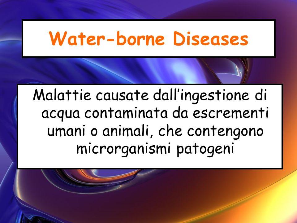 Water-borne Diseases Malattie causate dallingestione di acqua contaminata da escrementi umani o animali, che contengono microrganismi patogeni