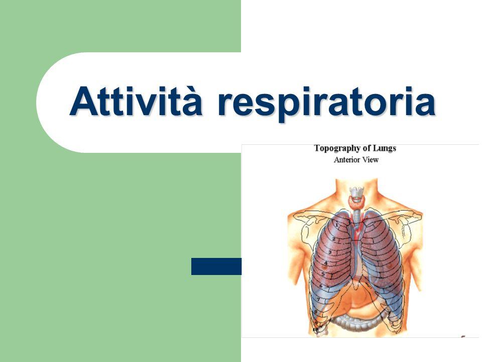 MANIFESTAZIONI DI ALTERAZIONI DELLA FUNZIONE RESPIRATORIA 1 Tosse Riflesso provocato da irritazione vie respiratorie - Cause diverse non tutte patologiche - Sintomo da valutare associato ad altri Produzione espettorato - Controllare volume, colore, consistenza - Verificare origine (basse o alte vie respiratorie) - Verificare se presenza sangue Dolore toracico - Origine respiratoria (es: bronchiti) - Origine non respiratoria (es: costale, muscolare)