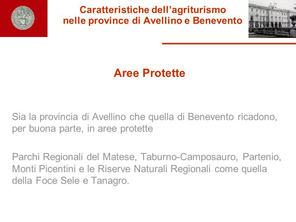 Caratteristiche dellagriturismo nelle province di Avellino e Benevento Aree Protette Sia la provincia di Avellino che quella di Benevento ricadono, pe