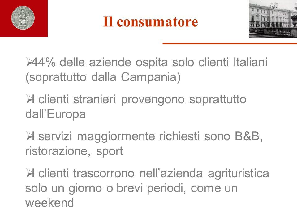 Il consumatore 44% delle aziende ospita solo clienti Italiani (soprattutto dalla Campania) I clienti stranieri provengono soprattutto dallEuropa I ser