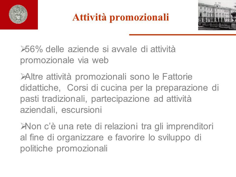 Attività promozionali 56% delle aziende si avvale di attività promozionale via web Altre attività promozionali sono le Fattorie didattiche, Corsi di c