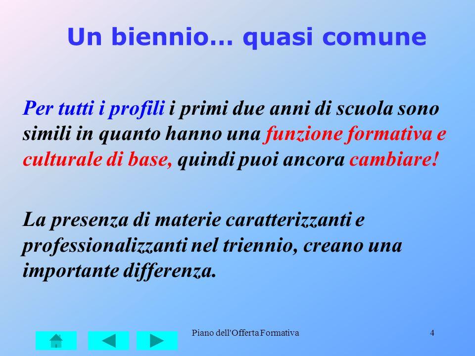 Piano dell'Offerta Formativa4 Un biennio… quasi comune Per tutti i profili i primi due anni di scuola sono simili in quanto hanno una funzione formati
