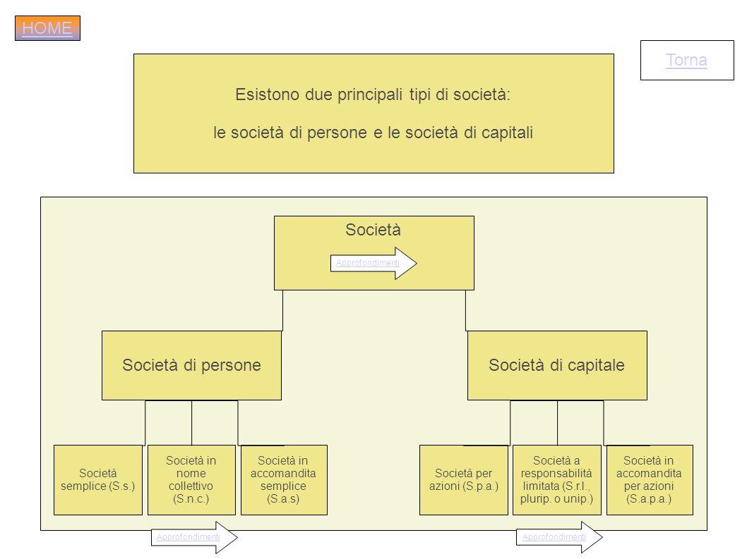 Esistono due principali tipi di società: le società di persone e le società di capitali Torna Società di persone Società in nome collettivo (S.n.c.) S