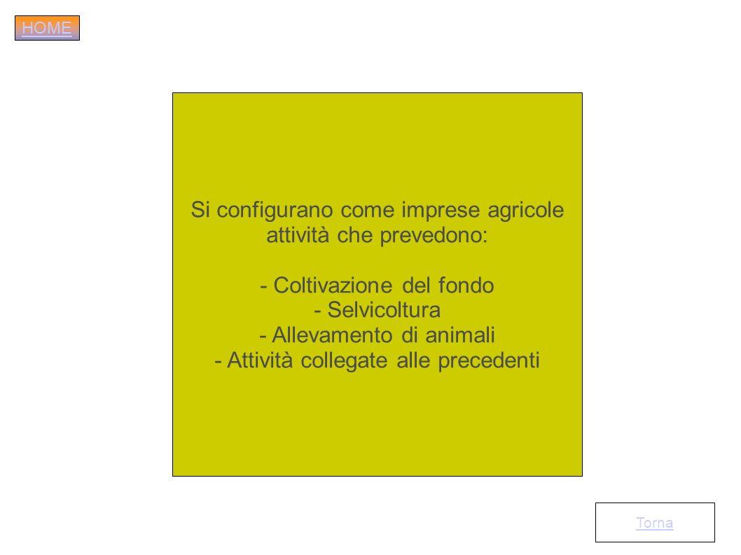 Si configurano come imprese agricole attività che prevedono: - Coltivazione del fondo - Selvicoltura - Allevamento di animali - Attività collegate all