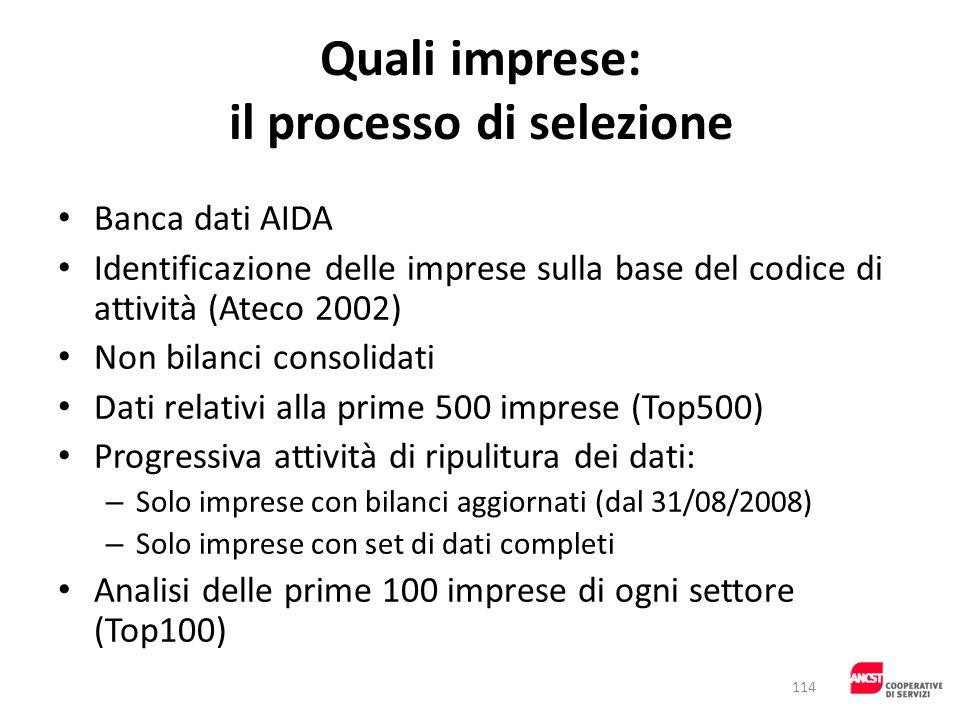 Quali imprese: il processo di selezione Banca dati AIDA Identificazione delle imprese sulla base del codice di attività (Ateco 2002) Non bilanci conso
