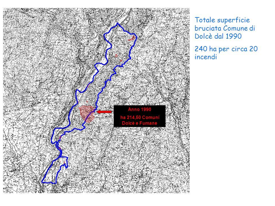 Totale superficie bruciata Comune di Dolcè dal 1990 240 ha per circa 20 incendi Anno 1990 ha 214,50 Comuni Dolcè e Fumane
