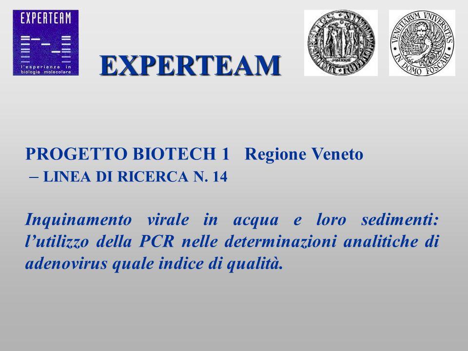 PROGETTO BIOTECH 1 Regione Veneto – LINEA DI RICERCA N. 14 Inquinamento virale in acqua e loro sedimenti: lutilizzo della PCR nelle determinazioni ana