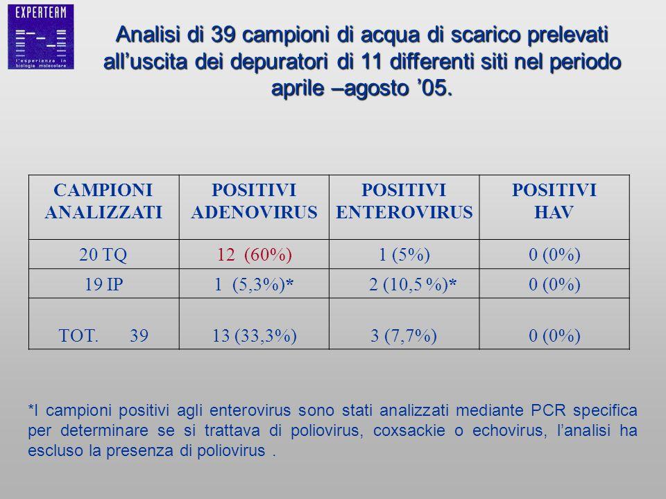 CAMPIONI ANALIZZATI POSITIVI ADENOVIRUS POSITIVI ENTEROVIRUS POSITIVI HAV 20 TQ12 (60%)1 (5%)0 (0%) 19 IP1 (5,3%)* 2 (10,5 %)*0 (0%) TOT. 3913 (33,3%)