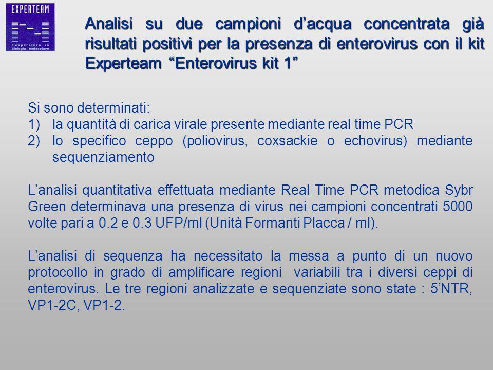 Si sono determinati: 1)la quantità di carica virale presente mediante real time PCR 2)lo specifico ceppo (poliovirus, coxsackie o echovirus) mediante
