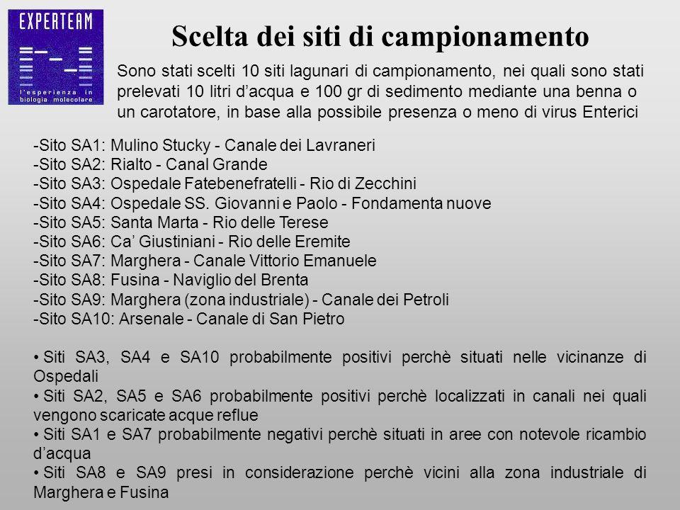 Scelta dei siti di campionamento -Sito SA1: Mulino Stucky - Canale dei Lavraneri -Sito SA2: Rialto - Canal Grande -Sito SA3: Ospedale Fatebenefratelli