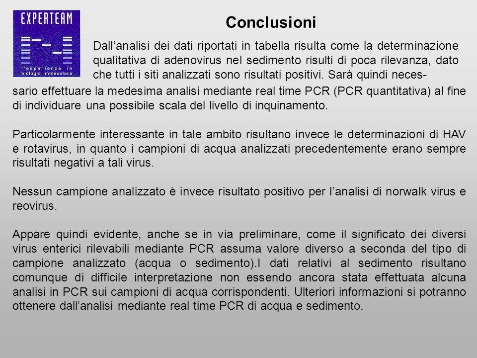 sario effettuare la medesima analisi mediante real time PCR (PCR quantitativa) al fine di individuare una possibile scala del livello di inquinamento.