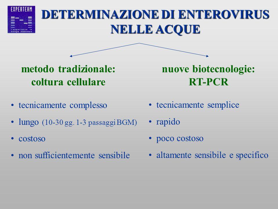 DETERMINAZIONE DI ENTEROVIRUS NELLE ACQUE metodo tradizionale: coltura cellulare tecnicamente complesso lungo (10-30 gg. 1-3 passaggi BGM) costoso non