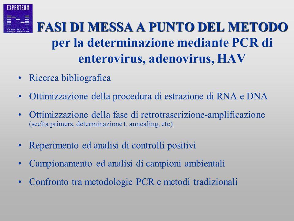 FASI DI MESSA A PUNTO DEL METODO FASI DI MESSA A PUNTO DEL METODO per la determinazione mediante PCR di enterovirus, adenovirus, HAV Ricerca bibliogra