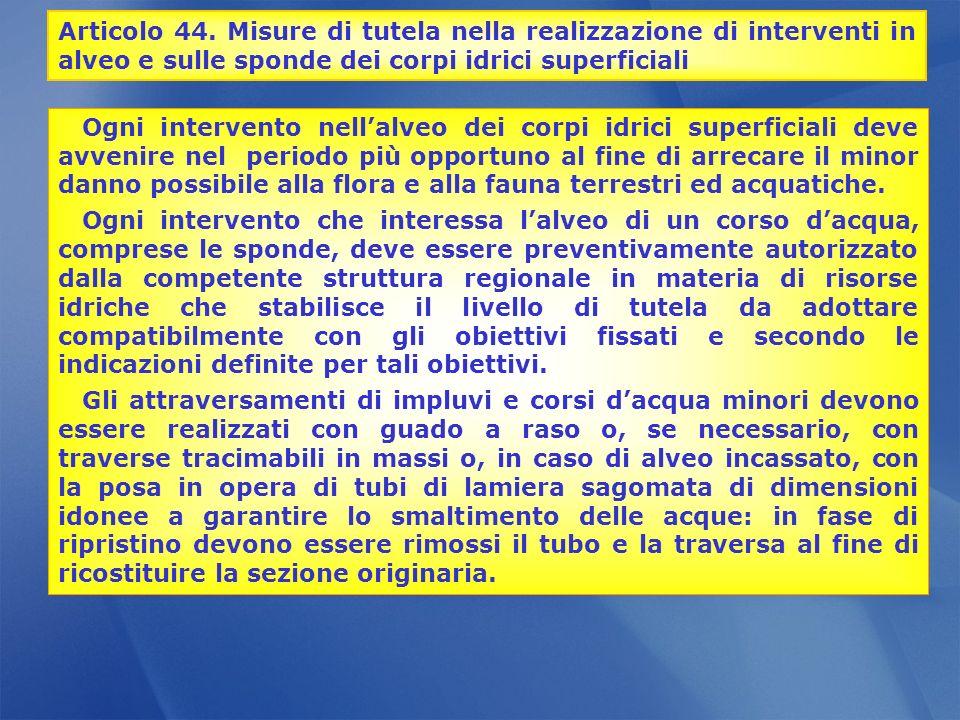 Articolo 44. Misure di tutela nella realizzazione di interventi in alveo e sulle sponde dei corpi idrici superficiali Ogni intervento nellalveo dei co