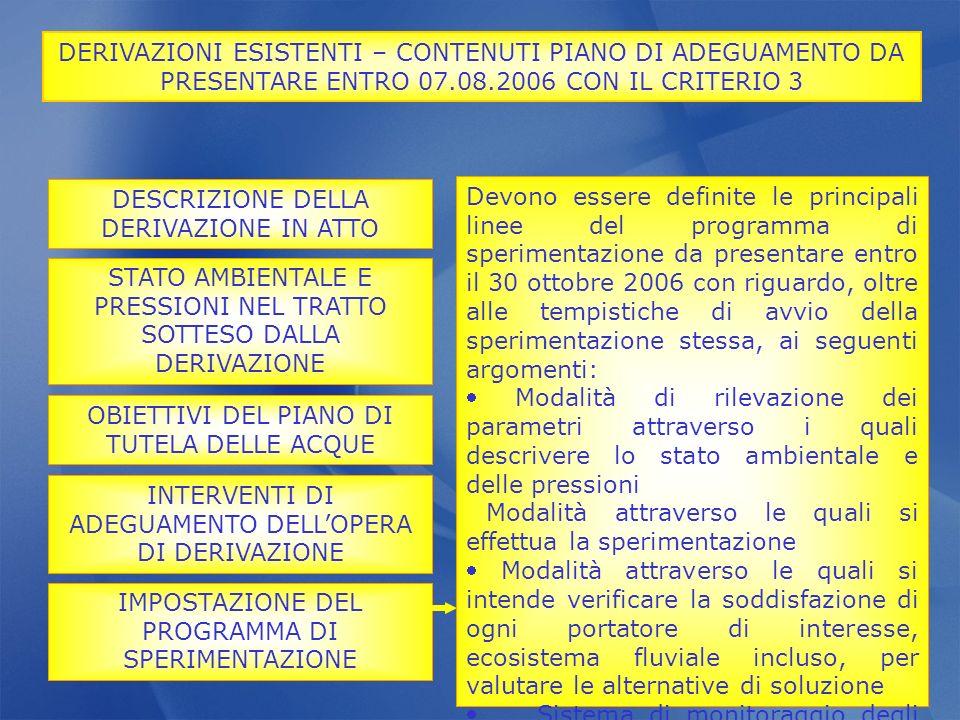 DERIVAZIONI ESISTENTI – CONTENUTI PIANO DI ADEGUAMENTO DA PRESENTARE ENTRO 07.08.2006 CON IL CRITERIO 3 INTERVENTI DI ADEGUAMENTO DELLOPERA DI DERIVAZ