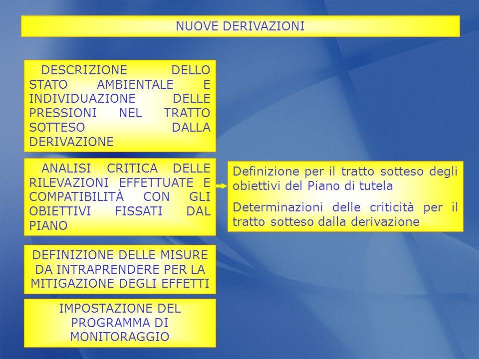 Definizione per il tratto sotteso degli obiettivi del Piano di tutela Determinazioni delle criticità per il tratto sotteso dalla derivazione NUOVE DER