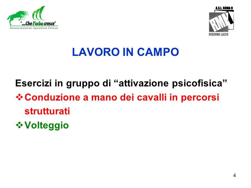 4 LAVORO IN CAMPO Esercizi in gruppo di attivazione psicofisica Conduzione a mano dei cavalli in percorsi strutturati Volteggio