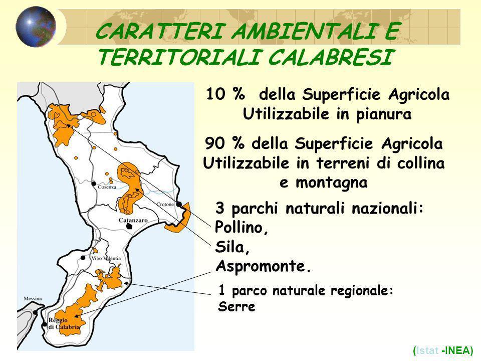 CARATTERI AMBIENTALI E TERRITORIALI CALABRESI 10 % della Superficie Agricola Utilizzabile in pianura 90 % della Superficie Agricola Utilizzabile in terreni di collina e montagna (Istat -INEA) 3 parchi naturali nazionali: Pollino, Sila, Aspromonte.