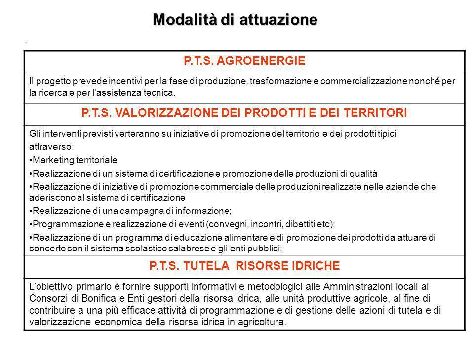Modalità di attuazione. P.T.S. (Progetti Tematici Strategici) I PTS costituiscono lo strumento attraverso cui vengono affrontate problematiche a carat