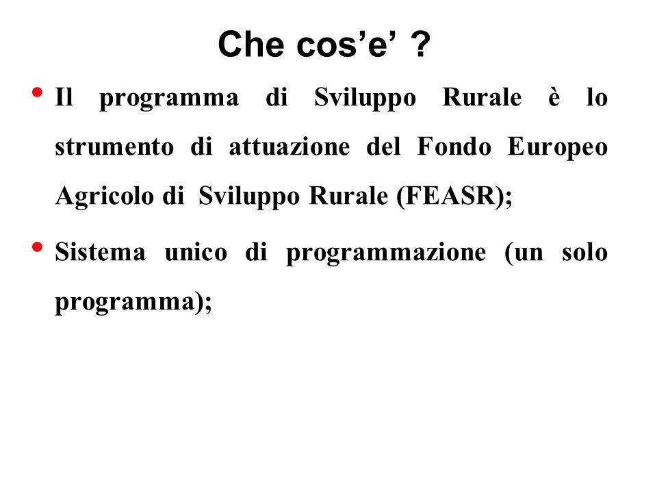 ASSE 2 - Miglioramento dell ambiente e dello spazio rurale Misura 2.2.1 – Primo imboschimento di terreni agricoli Entità dellaiuto POPOLAMENTI FORESTALI POPOLAMENTI NATURALIFORMI POLISPECIFICI Costi dimpianto 6.500 Euro/ha 5.000 Euro/ha Premio annuo a copertura dei costi 500 Euro/ha/anno 600 Euro/ha/anno di manutenzione per il 1° e 2° anno per unità di superficie boscata 300 Euro/ha/anno 400 Euro/ha/anno per il 3°, 4° e 5° anno Premio annuo a 300 Euro/ha/anno 300 Euro/ha/anno copertura della per un massimo di 15 anni perdita di reddito (per gli agricoltori od associazioni di agricoltori) 150 Euro/ha/anno 300 Euro/ha/anno per un massimo di 15 anni (per altri soggetti privati)