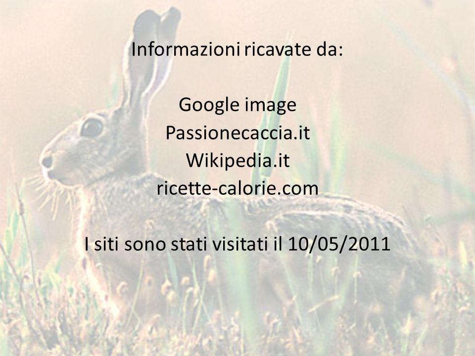 Informazioni ricavate da: Google image Passionecaccia.it Wikipedia.it ricette-calorie.com I siti sono stati visitati il 10/05/2011