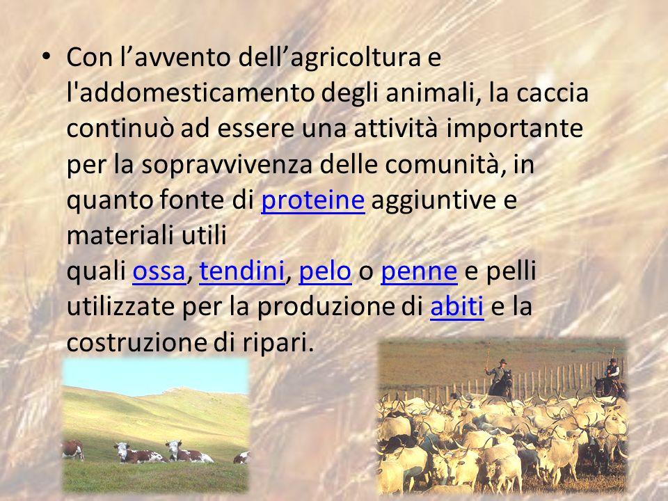 Con lavvento dellagricoltura e l'addomesticamento degli animali, la caccia continuò ad essere una attività importante per la sopravvivenza delle comun