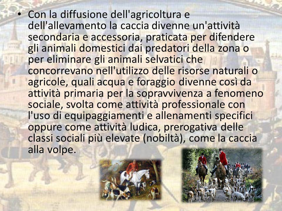 Con la diffusione dell'agricoltura e dell'allevamento la caccia divenne un'attività secondaria e accessoria, praticata per difendere gli animali domes