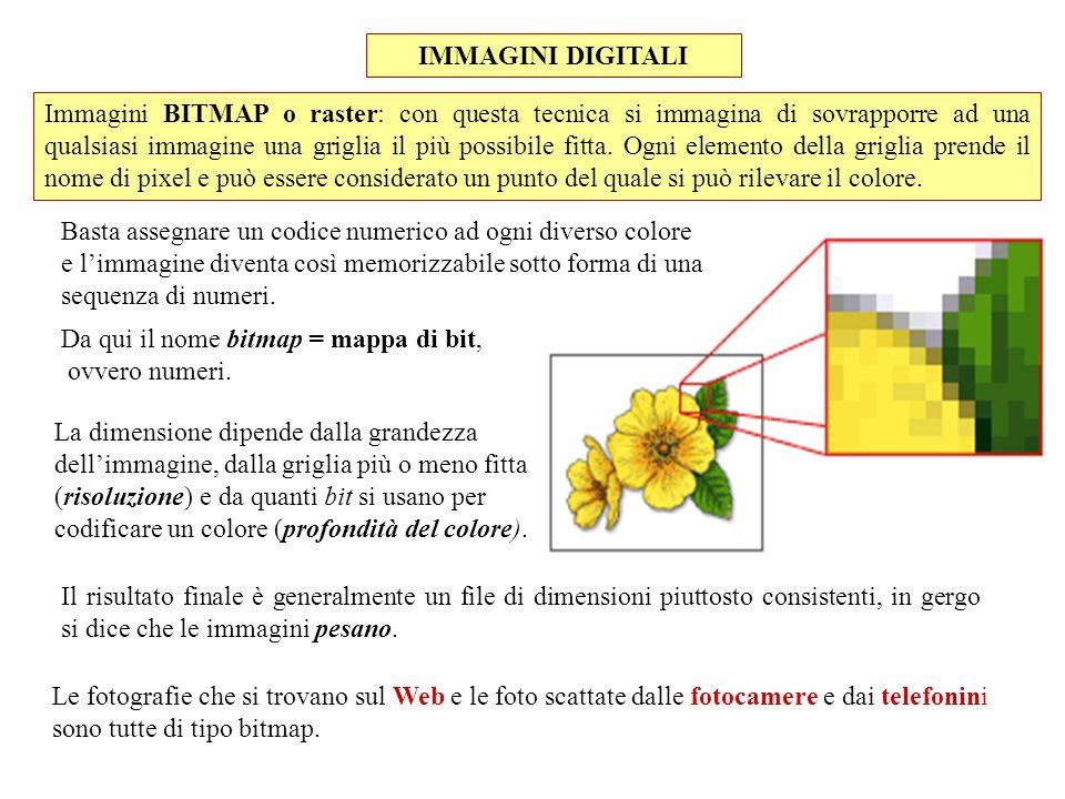 IMMAGINI DIGITALI Le fotografie che si trovano sul Web e le foto scattate dalle fotocamere e dai telefonini sono tutte di tipo bitmap. Immagini BITMAP