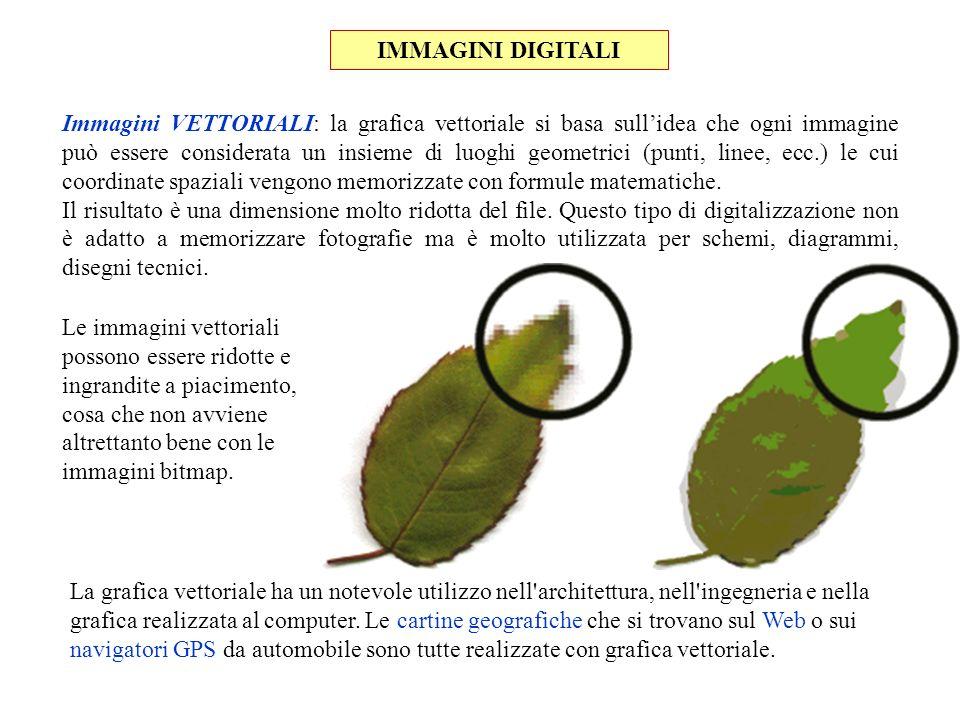 IMMAGINI DIGITALI Immagini VETTORIALI: la grafica vettoriale si basa sullidea che ogni immagine può essere considerata un insieme di luoghi geometrici
